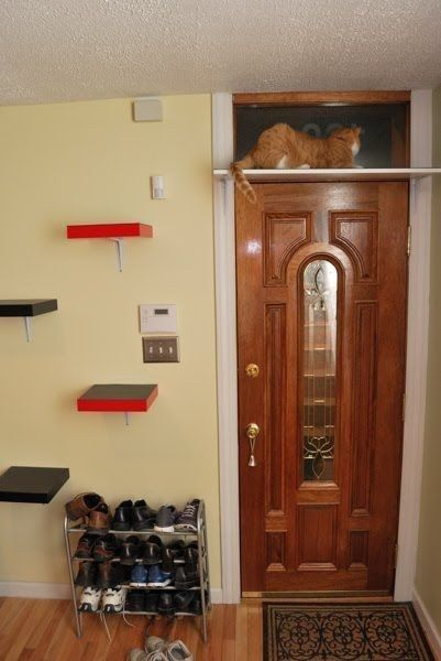 Create a stairway to heaven for your cat using Ikea Lack shelves.  Plus many more life with cats hacks.