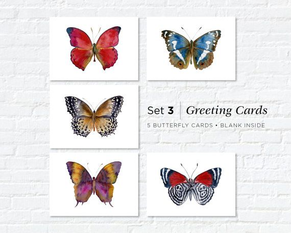 Watercolor Butterfly Greeting Cards Set 3 by AmyKirkpatrickArt
