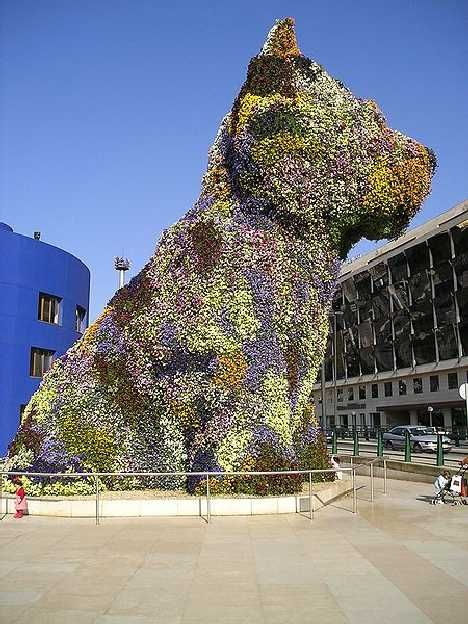 Puppy by Jeff Koons is a 43' tall topiary sculpture of a West Highland White Terrier at the Guggenheim Museum Bilboa is made of 70,000 flowers which are refreshed by an internal irrigation system. #Sculpture #Jeff_Koons #Flowers #Topiary #Bilboa