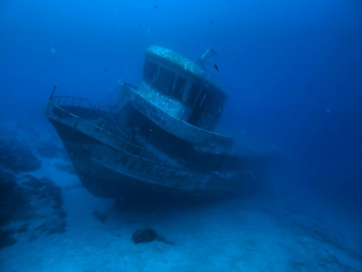Ayvalık dalış okulu - ida dalış merkezi #scuba #scubadiving #diving #underwaterphoto #scubapro #ayvalikdalis #dalisnoktam #kaş www.idadiving.com