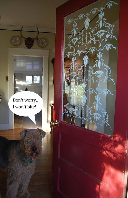 an idea for stenciling the glass on on my front door