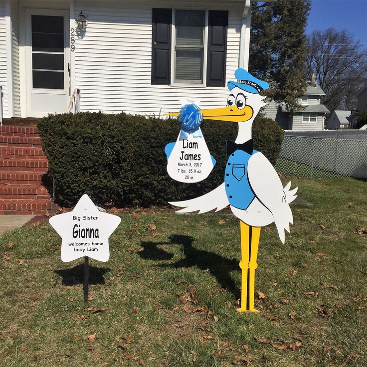 The Baby Stork Company, along Big sister Gianna are honored to welcome home baby Liam James!