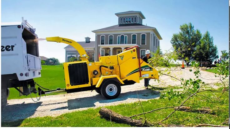 Tree Removal Cost - 5 Tricks to Save Money
