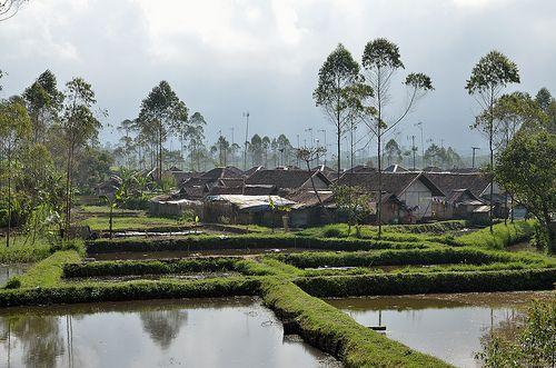 Indonésie - 050