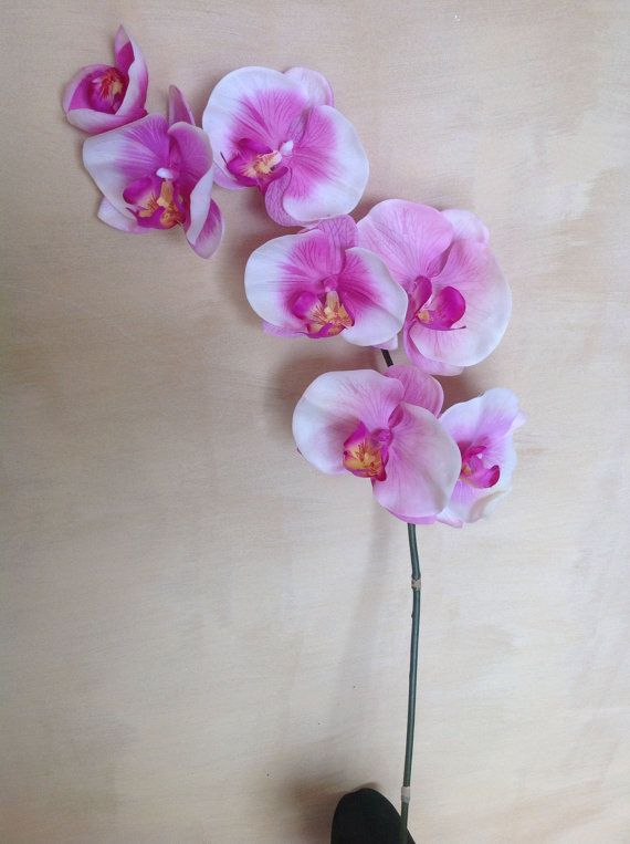 73 cm Real Touch Phalaenopsis Orchids with leaves by Anggerik
