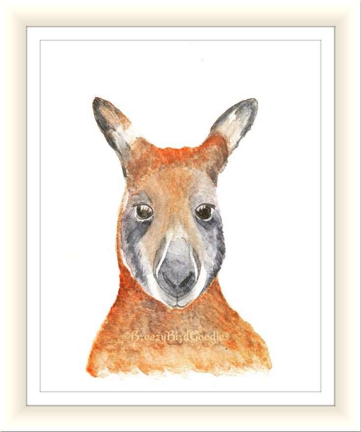 Australian Kangaroo Print, Watercolour Kangaroo, Red Kangaroo Art, Australian Marsupial Animal Illustration, Art for Home, Nursery Art by BreezyBirdGoodies on Etsy
