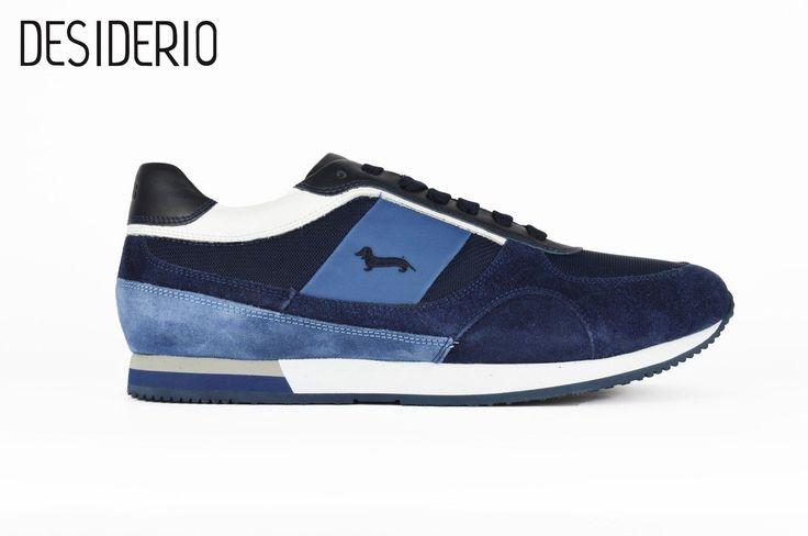 Harmont & Blaine scarpa uomo DESIDERIO boutique uomo/donna  Abbigliamento Canosa di Puglia BT