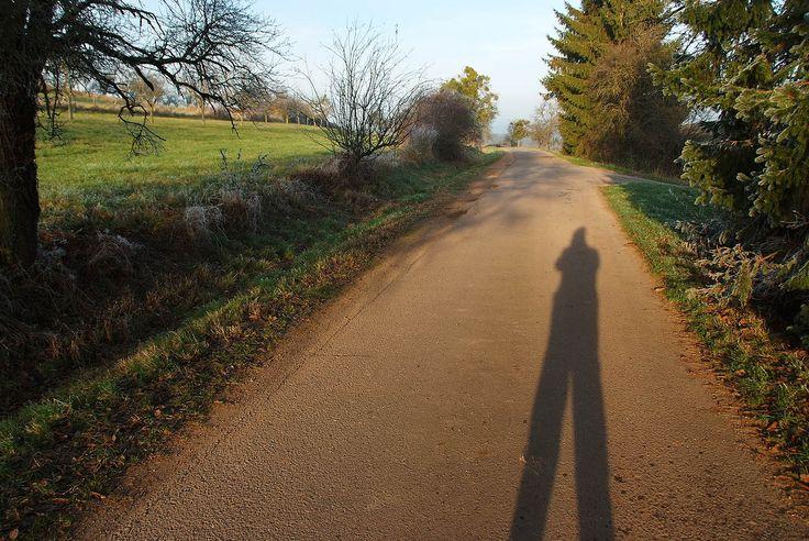 bei kurzer Sonnenscheindauer, gab es heute hier gegen 15.30 Uhr. Lange Schatten, bei kurzer Sonnenscheinsdauer, gab es hier heute bei uns. Wobei der Raureif im Schatten nicht weichen wollte. :-)
