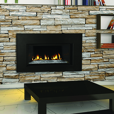napoleon direct vent natural gas fireplace insert with glass door and reflective panels - Napoleon Fireplaces