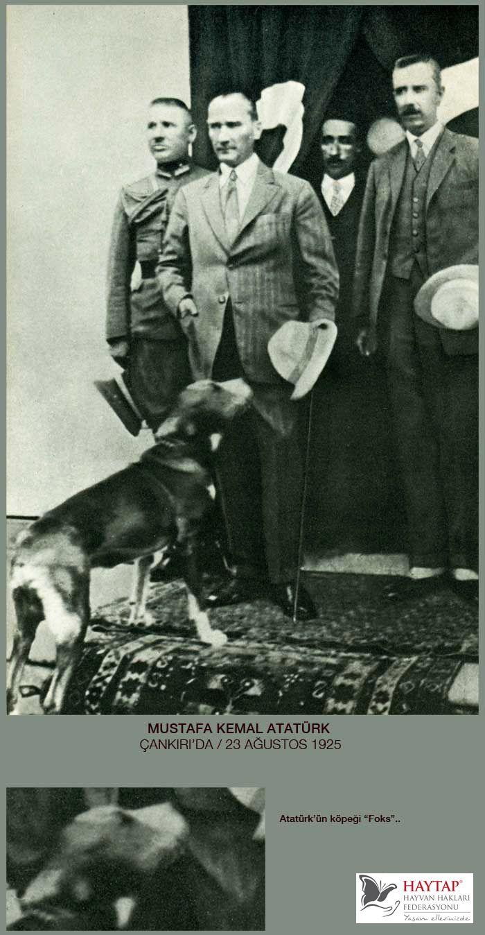 Atatürk ve köpeği Foks
