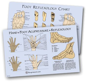 Reflexology Pressure Point Chart | Acupressure & Acupuncture Point Charts & Meridian Charts