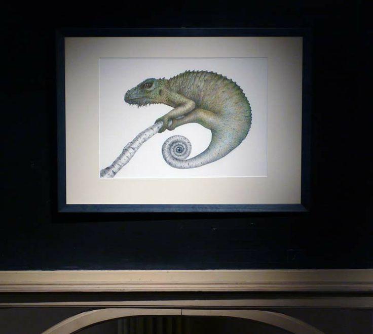 Disegno di Ilaria Ciardi in mostra a casa Varoli fino al 30 marzo 2014