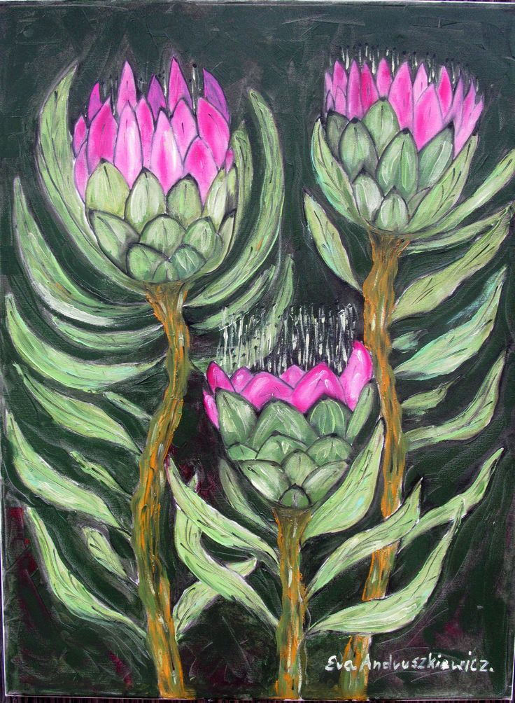 ''Protea'' malarstwo olejne Ewa Andruszkiewicz