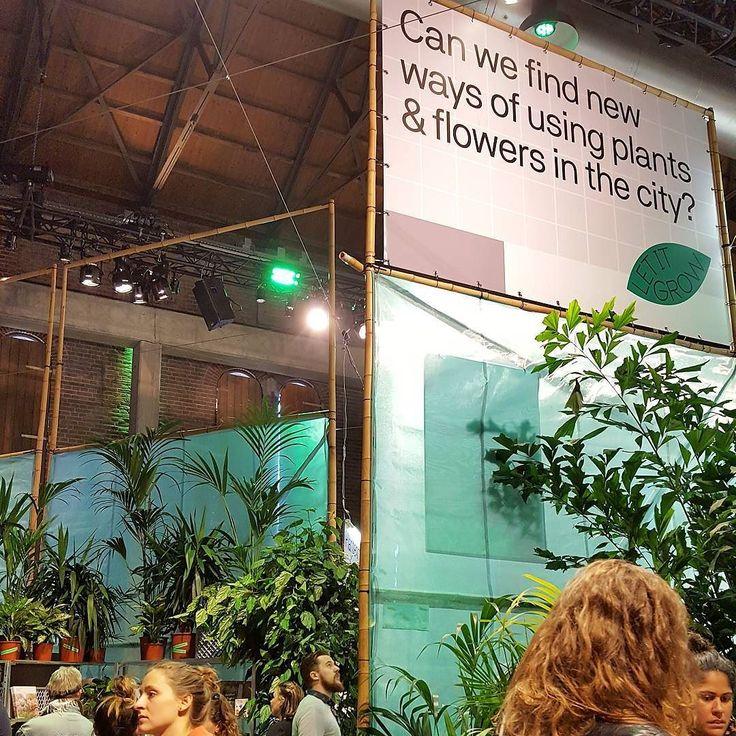 So many ideas in Let it Grow's Greenhouse festival