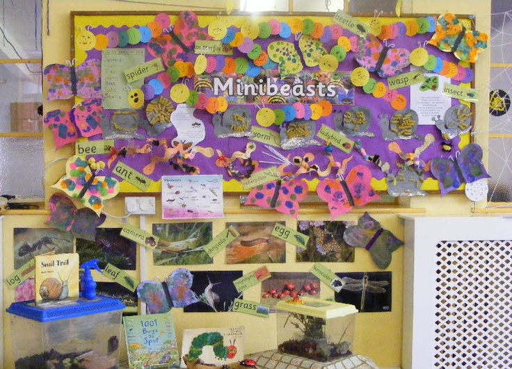 Minibeasts from Playtime PreschoolMinis Beasr, Class Display, Minis Beast, Classroom Display, Bulletin Boards, Minibeast Display, Classroom Eyfs, Minibeast Topic, Classroom Ideas