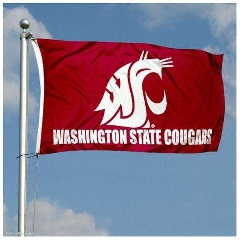 Washington State University, Martin Stadium | General Electric WSU Cougars Double-Sided 3x5 Flag