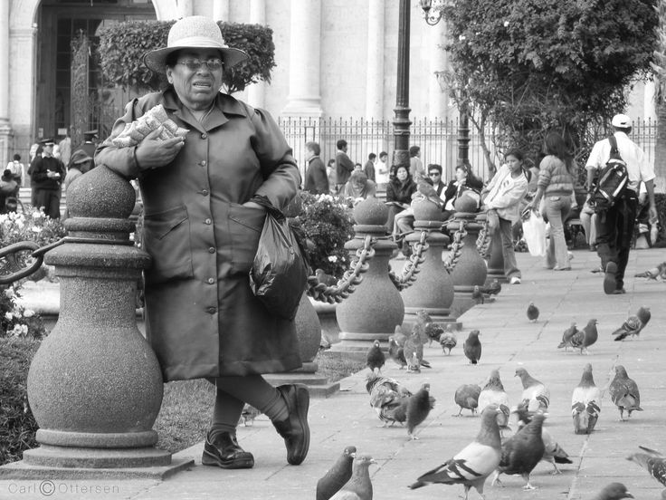 The Birdseed Seller of Arequipa by Carl Ottersen on 500px