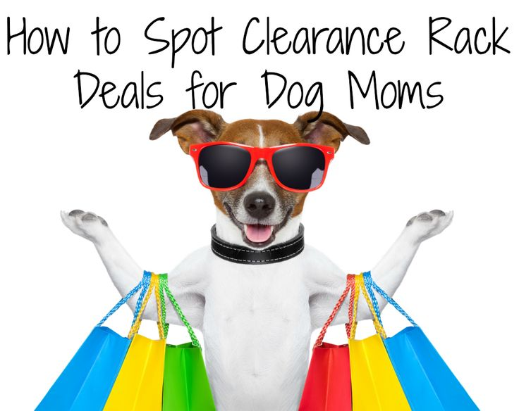 How to Spot Clearance Rack Deals for Dog Moms | http://www.beaglesandbargains.com/clearance-racks-holiday-sales-dog-moms/