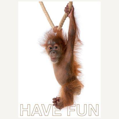 Have Fun #postcards