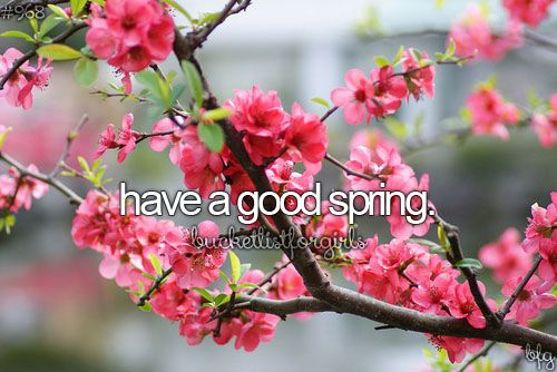 Bucket list: have a good spring. CHECK!
