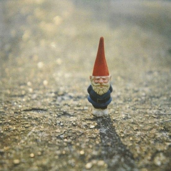 I have this as my desktop and it never ceases to make me smile. I NEED a miniature gnome to call my own!