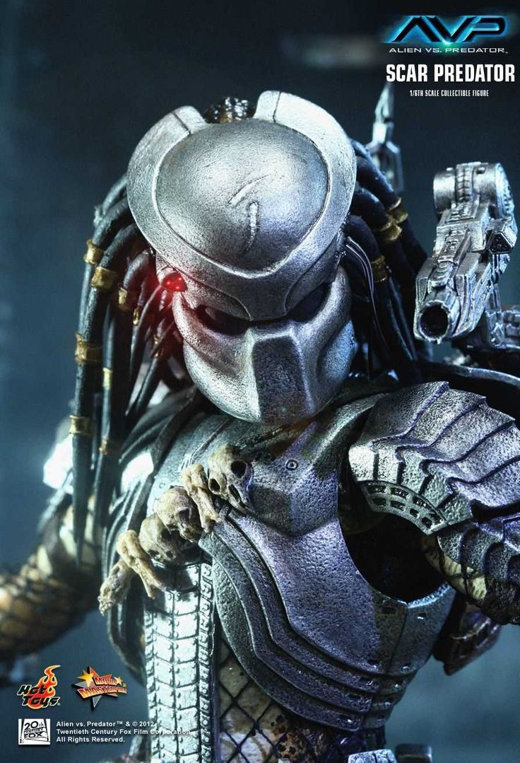 The 102 best images about PREDATOR on Pinterest   Predator costume ...