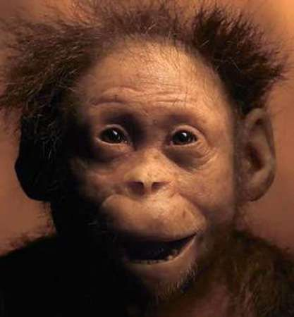 """Neanderthal Baby """"Lucy's Baby&quot..."""