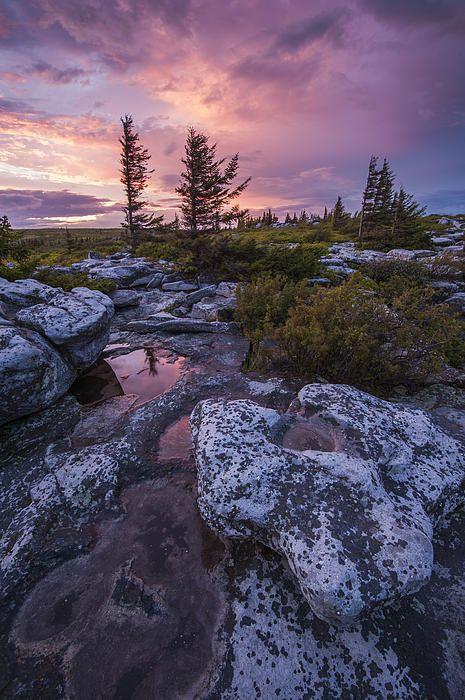 Bear Rocks, West Virginia: Storm Light / Fine Art America by Joseph Rossbach