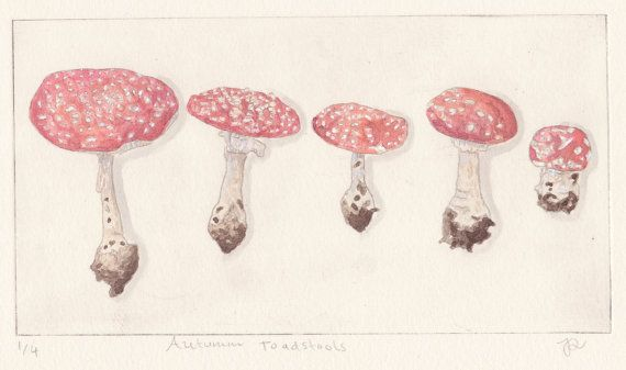 Autumn Toadstools by JessicaParkerArt on Etsy