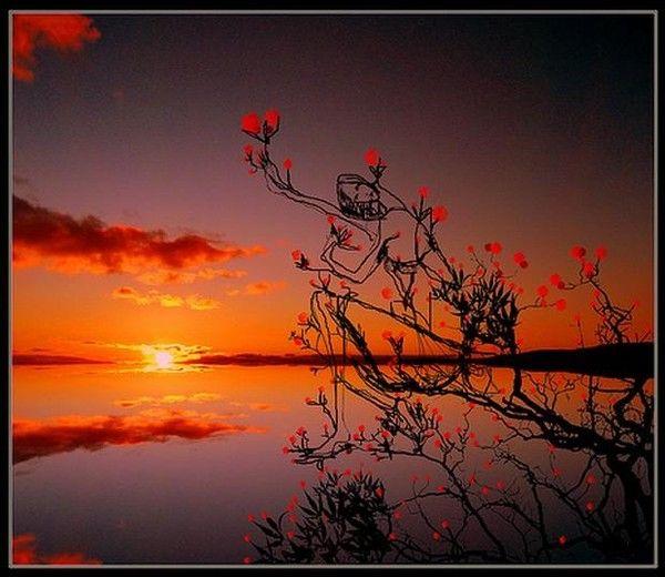 Les 25 meilleures id es concernant images du levers de - Lever et coucher du soleil est ouest ...
