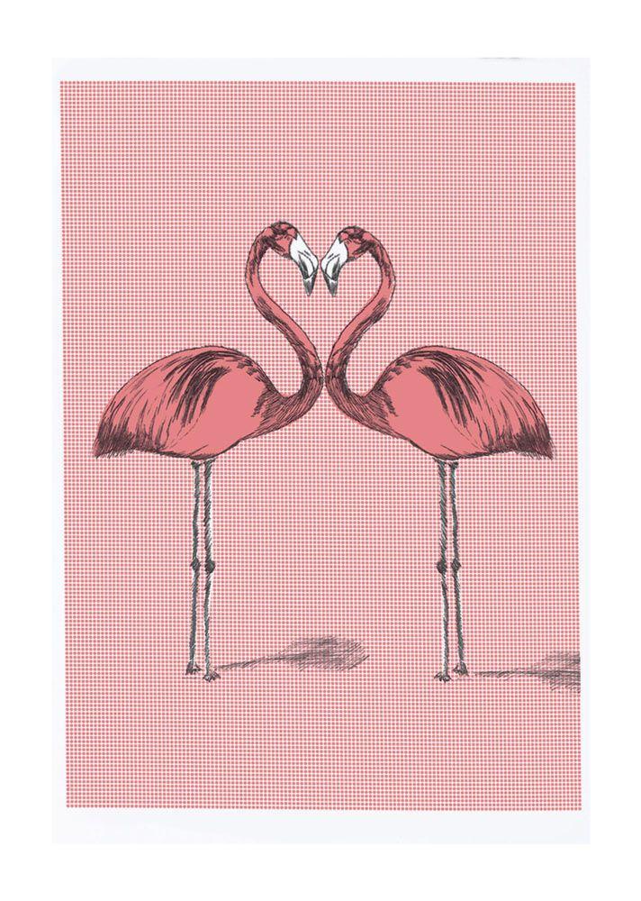 'Flamingos Happy' - James Nielsen