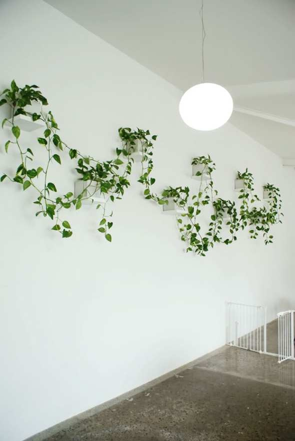 186 best g(r)owing green images on Pinterest Hanging gardens - der vertikale garten live screen danielle trofe