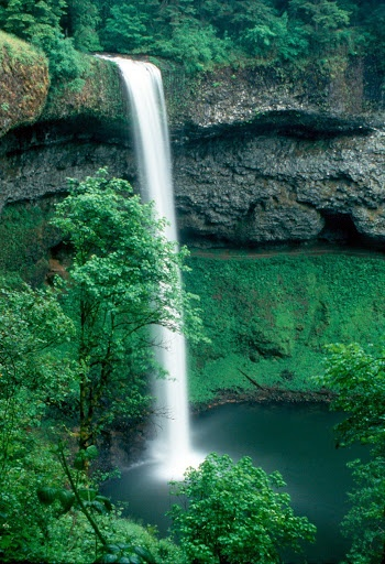 Silver Falls, Silver Falls State Park, OR   © Marsha K. Russell