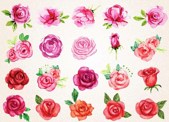 Watercolor Roses Clipart Watercolor Roses Svg Png 300 Ppi Red