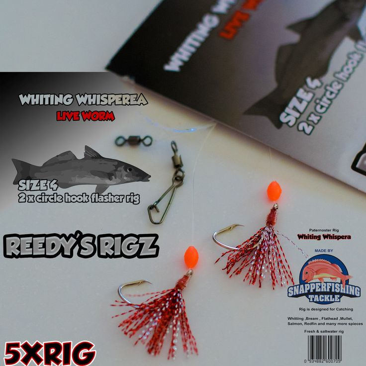 5x Whiting Rig Size #4 Circle Hooks Flasher Rigs - Live Worm By Reedy s Rigz