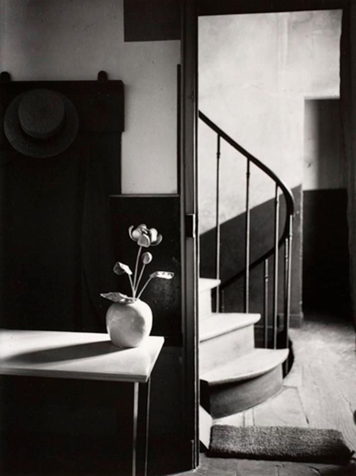 Andre Kertesz-uses simple black and white tones to add diversity in his photograph-the different blacks and whites set a tone through his image
