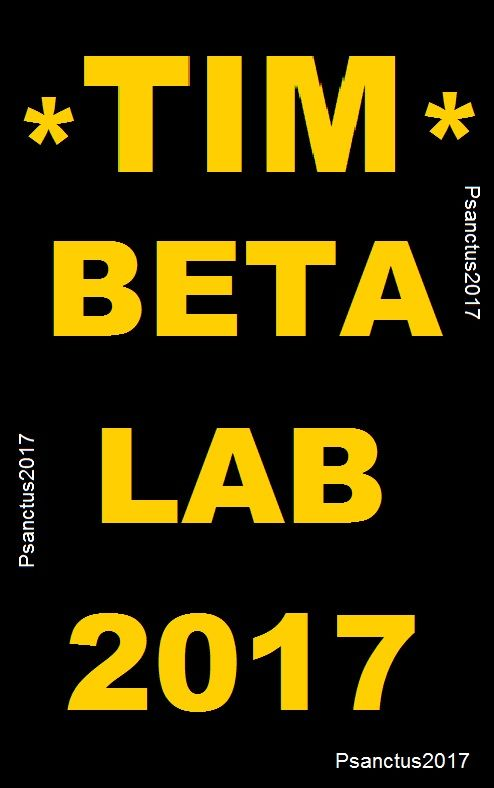 TIM # BETA # LAB 2017