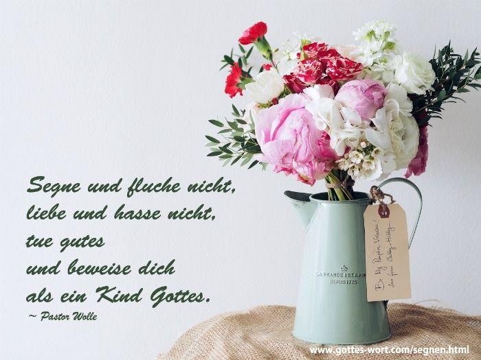 Segne und fluche nicht, liebe und hasse nicht Lese hier: http://www.gottes-wort.com/segnen.html