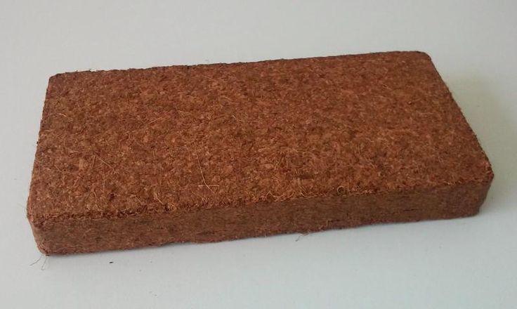 Tourbe de coco comme substrat ou amendement du sol: description, soins & multiplication.
