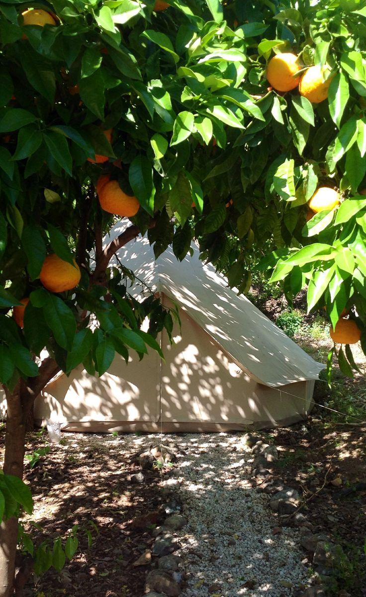 Bell tent at Casa de Laila, Andalucia, Spain