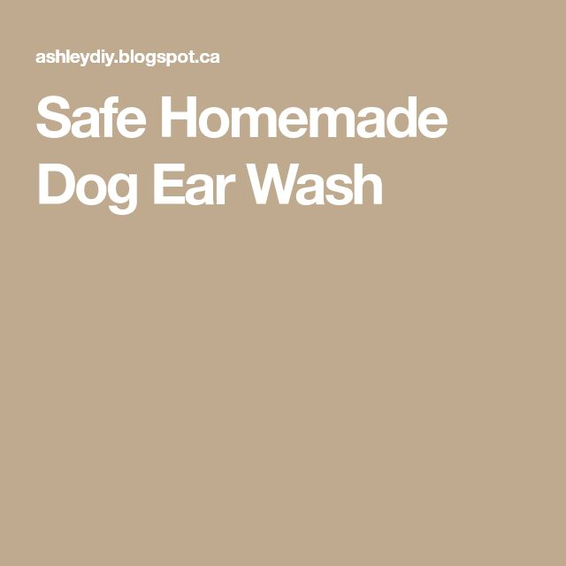 Safe Homemade Dog Ear Wash
