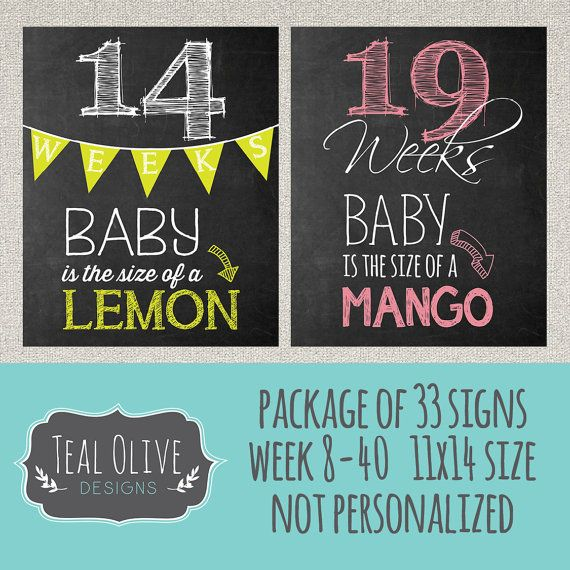 Weekly Pregnancy Chalkboard Sign - Week 8-40 Package Deal 33 Signs - Weekly Pregnancy Countdown - Baby Size Only - 11x14 - INSTANT DOWNLOAD