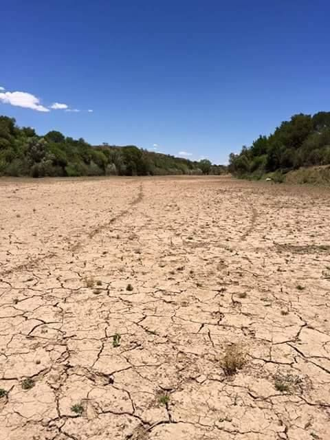South Africans everywhere are reaching out, in many different ways, to help their drought-stricken countrymen through our worst water crisis ever.