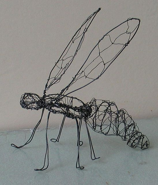Insect Pre-Gut wire sculpture - perpetualplum