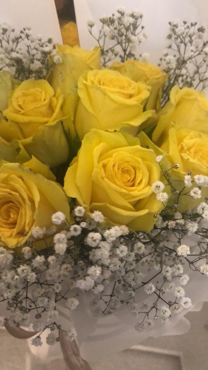 Yellow Rose ورد أصفر إن أردت تبهج خاطرك اشتر لنفسك ورد ملون Flowers Rose Plants