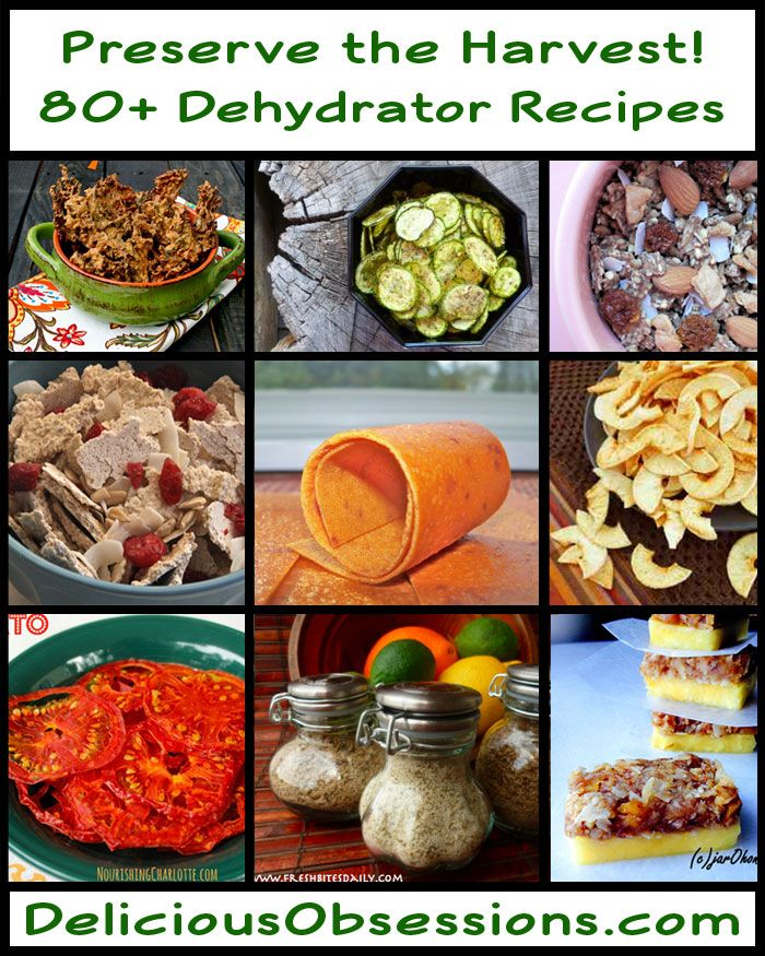 80+ Dehydrator Recipes To Preserve the Harvest // deliciousobsessions.com #dehydrate #foodpreservation #Excalibur