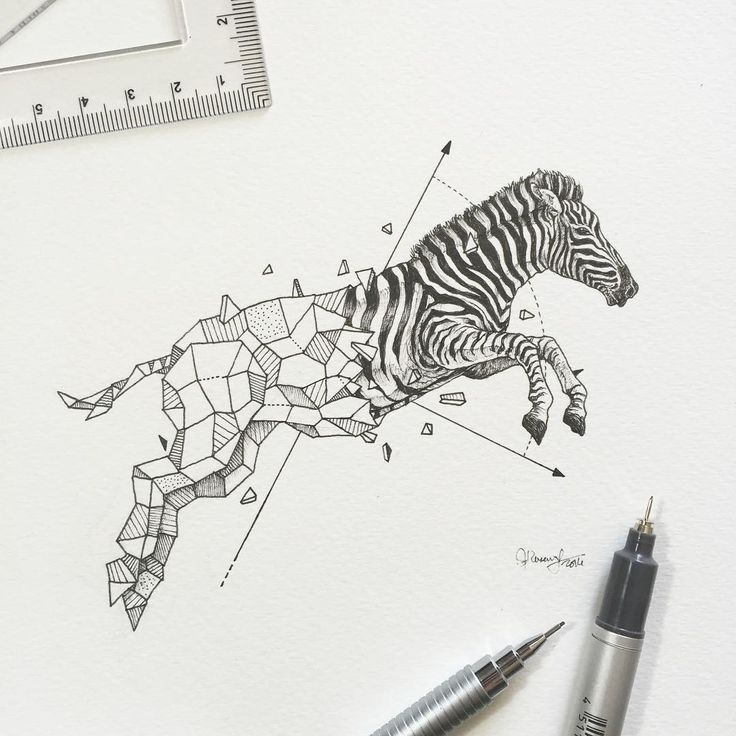 Geometric Animal Drawing 66 best Geometric beas...