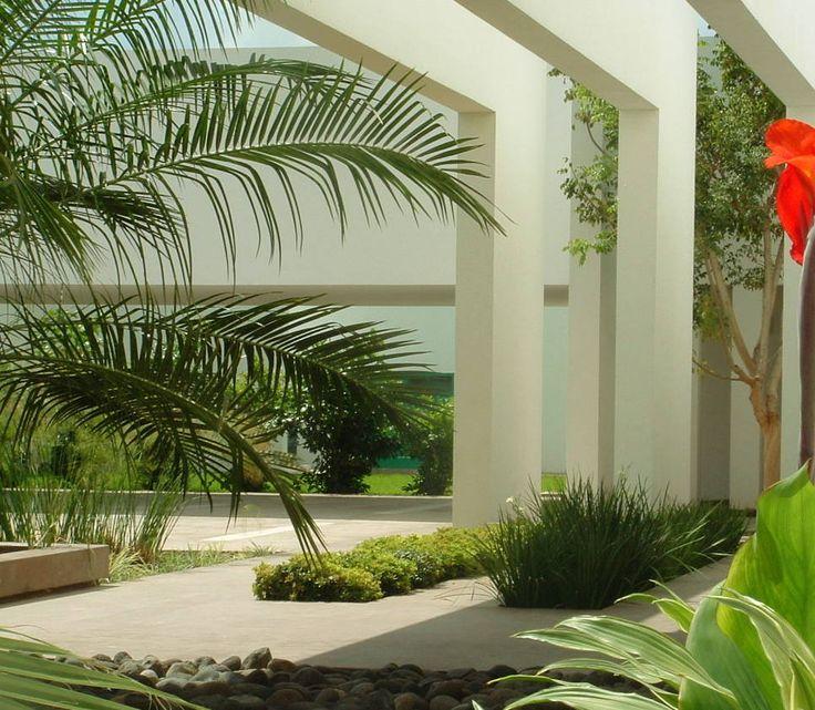 Busca imágenes de diseños de Jardines estilo minimalista}: Vestíbulo de acceso con jardineras y espejo de agua. Encuentra las mejores fotos para inspirarte y y crear el hogar de tus sueños.