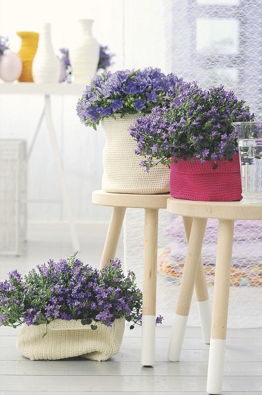 jardin-de-flores03