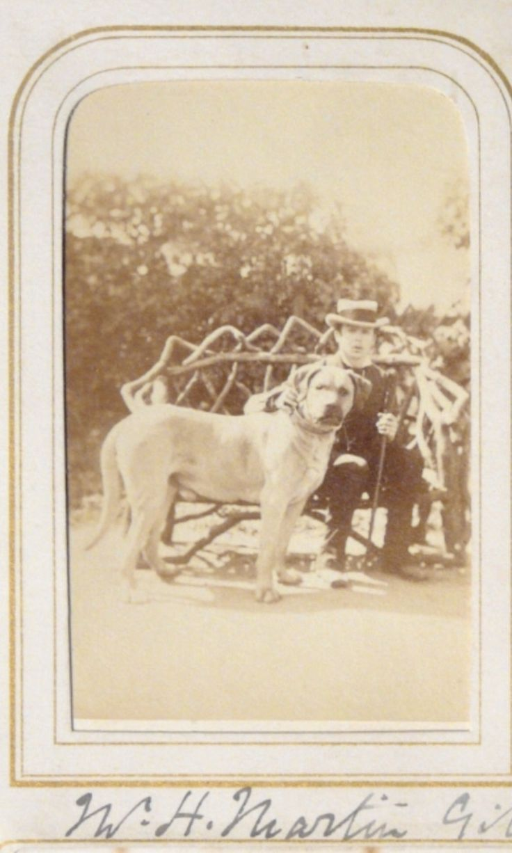 Henry Martin Gibbs with a dog. Owner of the picture belong to National Trust Collections